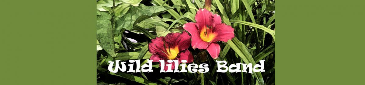 Wild Lilies Band